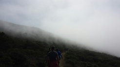 Walking in the clouds
